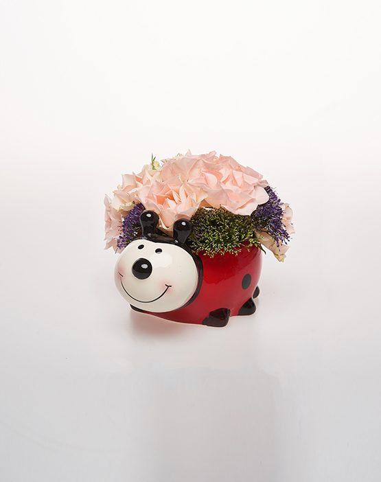 Aranjament floral - Mini Gargarita
