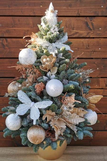Brăduț Crăciun, înălțimea aproximativ 70 cm